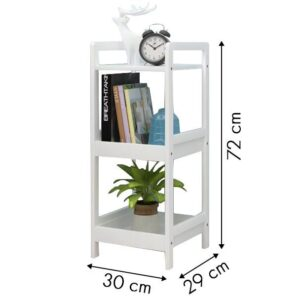 Pisike raamatu ja taimede riiul 2