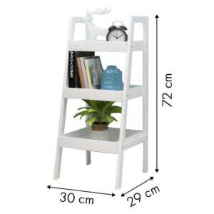 Pisike raamatu ja taimede riiul